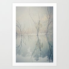 foggy morning at the lake Art Print