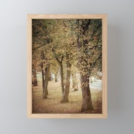 Autumn Woodland Scene Framed Mini Art Print