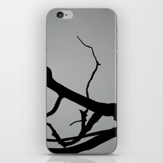 TREE ON JOANNA BALD iPhone & iPod Skin