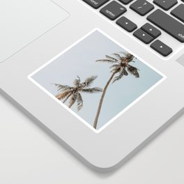 two palm trees Sticker