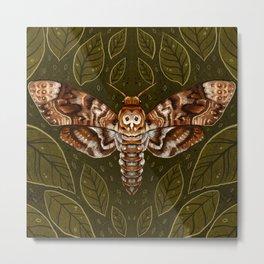 Deaths-Head Moth Metal Print