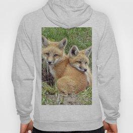 Fox Twins Hoody