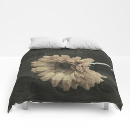 Crackled Gerbera Daisy Comforters