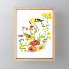 Finches Framed Mini Art Print