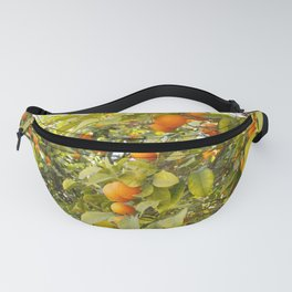 Fruits of Greece Fanny Pack