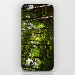 Forest // Silent In The Trees  iPhone Skin
