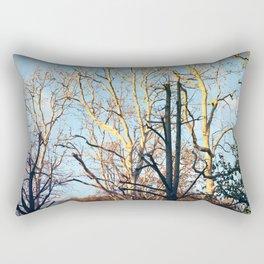 Treptow V Rectangular Pillow