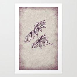 Walnut Art Print
