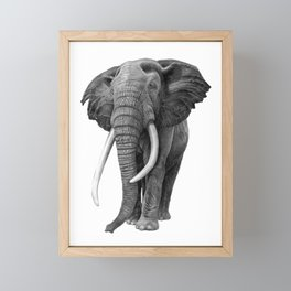 Bull elephant - Drawing in pencil Framed Mini Art Print