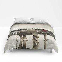 Master of Ceremonies Comforters