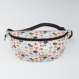 034 Fanny Pack