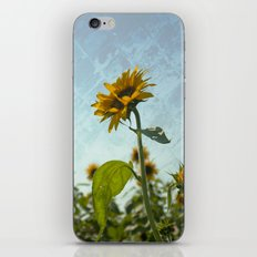 Sunny Flower iPhone & iPod Skin