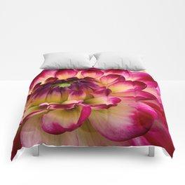 Pink Dahlia 65 Comforters