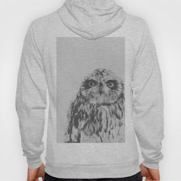 Owl In Black And White Hoody