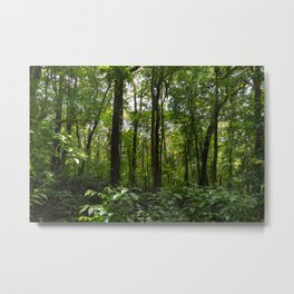 Immersed in Nature Metal Print