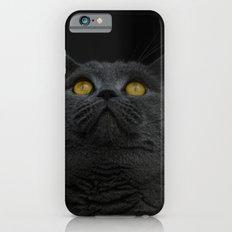 Look Up - Black Cat iPhone 6s Slim Case