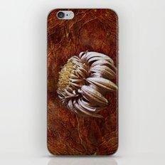 last leg iPhone & iPod Skin
