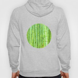 Green Forest Hoody