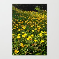 Flowers on the Hill Canvas Print