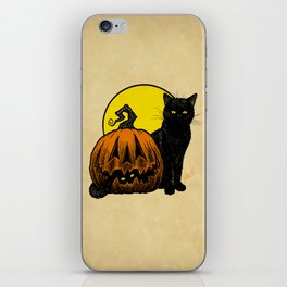 Still Life with Feline and Gourd iPhone Skin