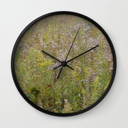 Soft Field Wall Clock