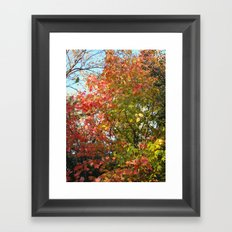 Autumn Leaves I Framed Art Print
