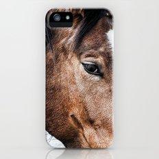 Equine Trance Slim Case iPhone (5, 5s)