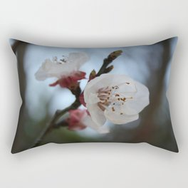 Close Up Apricot Blossom In Pastel Shades Rectangular Pillow