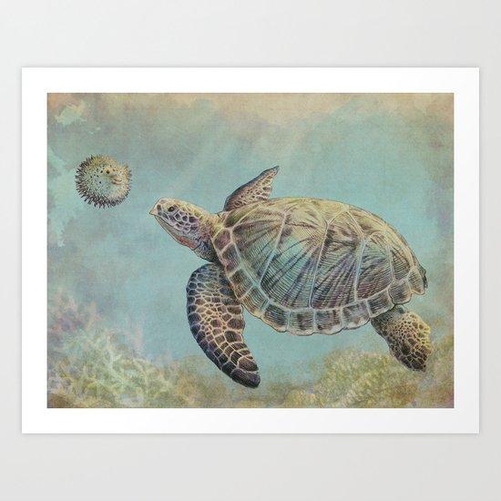 A Curious Friend (sea turtle variation) Art Print