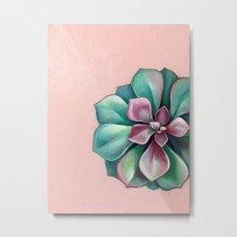 Succulent in Pink Metal Print