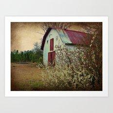 Happy Old Barn Art Print
