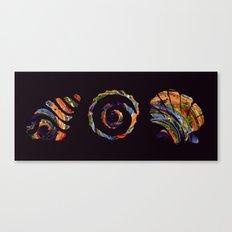 Deep Sea Shell Trio Canvas Print