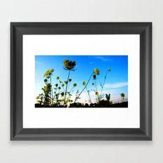 out back Framed Art Print