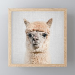 Alpaca - Colorful Framed Mini Art Print