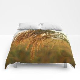 Long Grain Rice Comforters