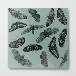 Butterflies anno 1630 Metal Print