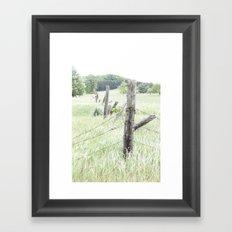 Old Fence Posts Framed Art Print