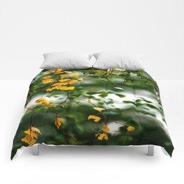 Fontainebleau Comforters