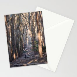 Andy Goldsworthy Wood Line, San Francisco Photography, California Fine Art, Woodland, Enchanted Forest Home Decor Stationery Cards