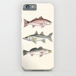 """""""Inshore Slam!"""" by Amber Marine ~ Redfish, Snook, & Trout Watercolor Illustration, (Copyright 2013) iPhone Case"""