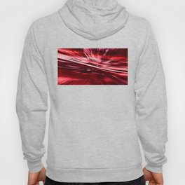 Primordial fission Hoody