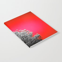 Gray Trees Candy Apple Red Sky Notebook