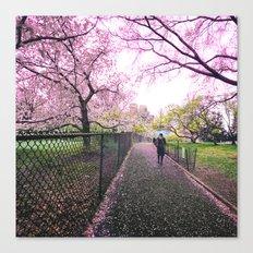 New York City Springtime Path Canvas Print