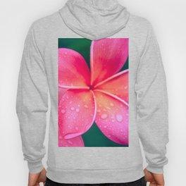 Aloha Hawaii Kalama O Nei Pink Tropical Plumeria Hoody