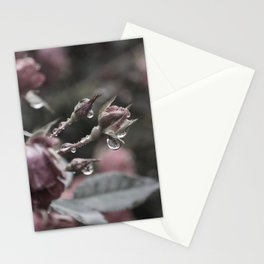 Big Roses Don't Cry Stationery Cards