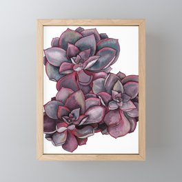 Succulent Patch Framed Mini Art Print