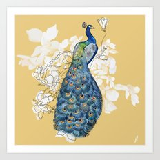 Animalia - The Peacock - Animal kingdom print Art Print