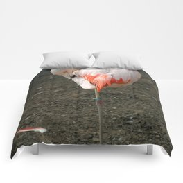 Chilean Flamingo Comforters