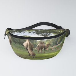 a momentary lapse of reason Fanny Pack