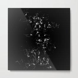 BXW-2l(st)nplt Metal Print